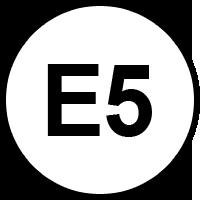 benzina-e5